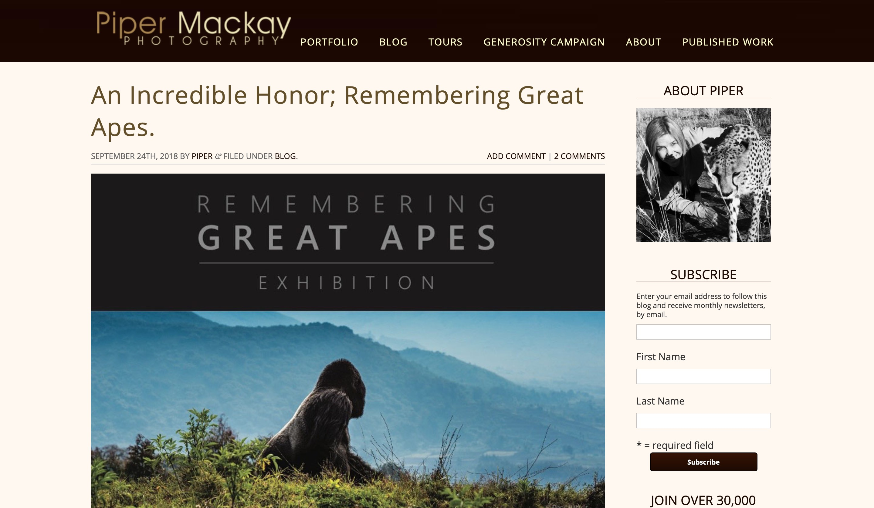 Piper Mackay website blog page screenshot