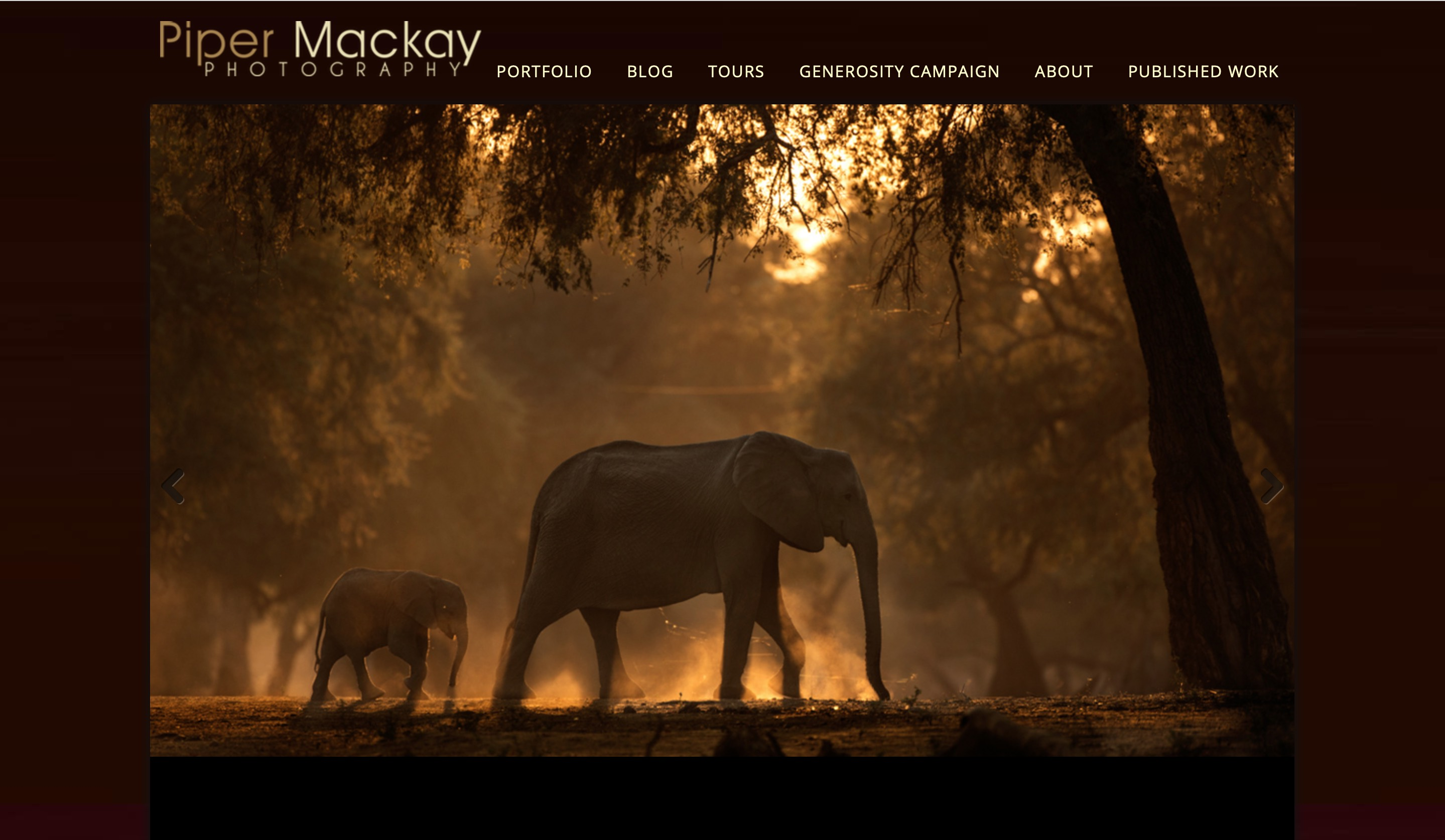 Piper Mackay website home page screenshot